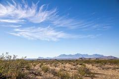 Южный ландшафт Техаса около большого национального парка загиба, Техаса Стоковая Фотография RF