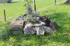 южный немецкий сад коттеджа Стоковое фото RF