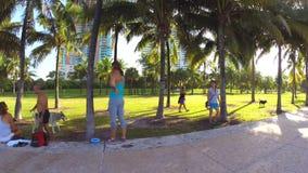 Южный парк Miami Beach Pointe сток-видео