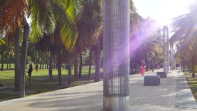 Южный парк Miami Beach Pointe видеоматериал
