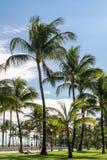 Южный променад пляжа, Miami Beach, Флорида Стоковая Фотография RF