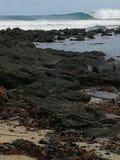 Южный пляж Стоковые Изображения RF
