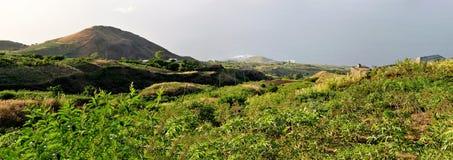 Юкка или маниок fields в Fogo, Cabo Verde Стоковая Фотография