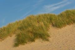 дюна Стоковые Изображения