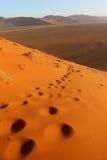 дюна 45 Стоковые Фотографии RF
