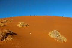 дюна 45 Стоковая Фотография RF