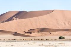 дюна Стоковые Фото