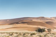 дюна 2 Стоковое Изображение