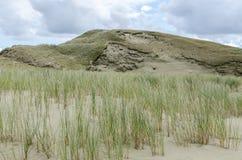 дюна Стоковая Фотография