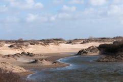 дюны голландские Стоковые Изображения RF