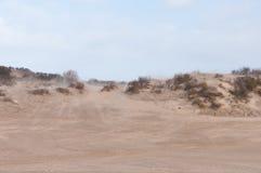дюны голландские Стоковое фото RF