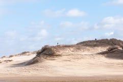 дюны голландские Стоковая Фотография RF
