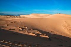 дюны стоковые изображения rf