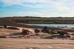 дюны стоковое фото rf