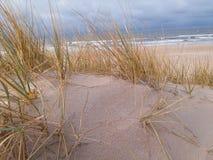 дюны Стоковое Изображение