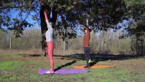 2 люд делая namaste йоги пар представляют на пляже на заходе солнца сток-видео