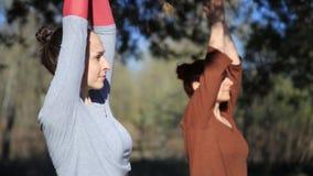 2 люд делая namaste йоги пар представляют на пляже на заходе солнца видеоматериал