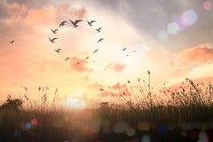 люди принципиальной схемы предпосылки голубые silhouettes всеединство неба Стоковое фото RF