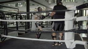 2 люд практикуя бокс Muay тайский сток-видео