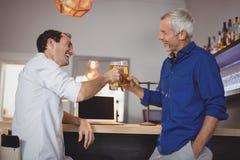 2 люд провозглашать их стекла пива Стоковое Фото