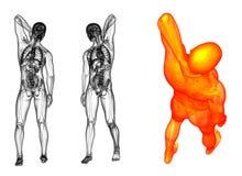 людск иллюстрация вектора