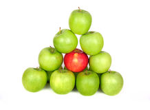 яблоки белые Стоковое фото RF