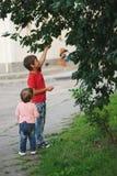 Яблоки выбора мальчика и девушки Стоковое фото RF