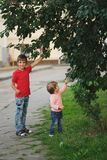 Яблоки выбора мальчика и девушки Стоковое Изображение