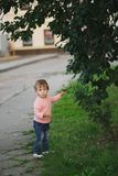 Яблоки выбора мальчика и девушки Стоковые Фотографии RF