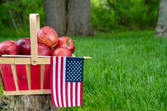 Яблоки в корзине с американским флагом стоковые изображения rf