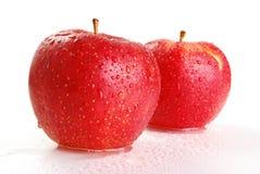 яблоки изолировали белизну 2 Стоковое Изображение
