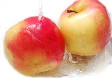 яблоки изолировали красную воду Стоковые Фотографии RF
