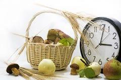 Яблоки и грибы с большими часами на белой предпосылке Стоковое Изображение RF