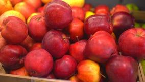 Яблоки яблоки красные Сбор Яблока много яблок Яблоки на стойле рынка сток-видео