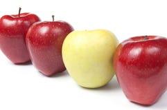 яблоки различный красный желтый цвет Стоковое Изображение