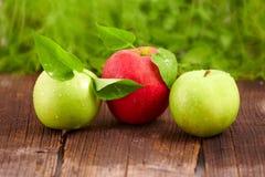 яблоки свежие Стоковые Фотографии RF