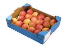 яблоки свежие Стоковое Изображение RF
