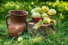 Яблоки с кувшином, натюрмортом стоковые изображения