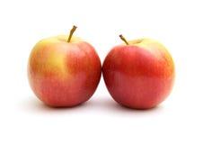 яблоки 2 Стоковое Изображение RF