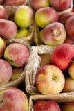 Яблоки Стоковая Фотография RF