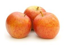 яблоки 3 Стоковое Изображение RF