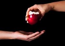 яблоко держа красную женщину Стоковое Изображение