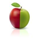 яблоко - зеленый красный цвет Стоковое Фото