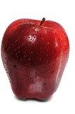 яблоко одиночное Стоковое Изображение