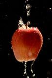 Яблоко очень вкусный Стоковые Изображения RF