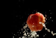 Яблоко очень вкусный Стоковое фото RF