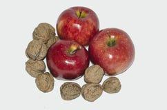 Яблоко при грецкий орех, изолированный на белой предпосылке стоковые изображения rf