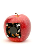 яблоко самомоднейшее Стоковые Фотографии RF