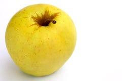яблоко свежее Стоковые Изображения RF