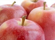 яблоко 11 Стоковые Изображения
